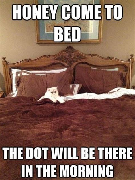 In Bed Meme by Honey Come To Bed Pics Memes Captioned