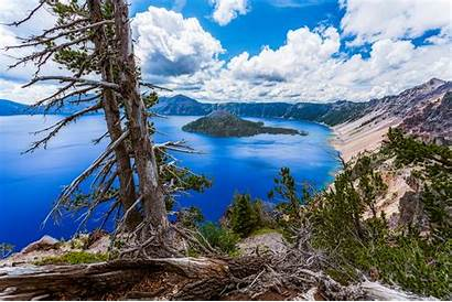 Crater Lake National Park Wallpapers Forest Mountain