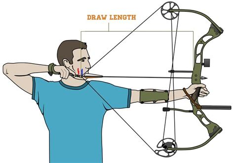 choosing   arrows   compound bow