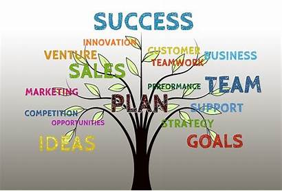 Marketing Strategies Successful Business Learned Owners Businesses