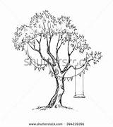 Swing Tree Coloring Sketch Dreamy Drawing Drawings Designlooter Shutterstock Hammock sketch template