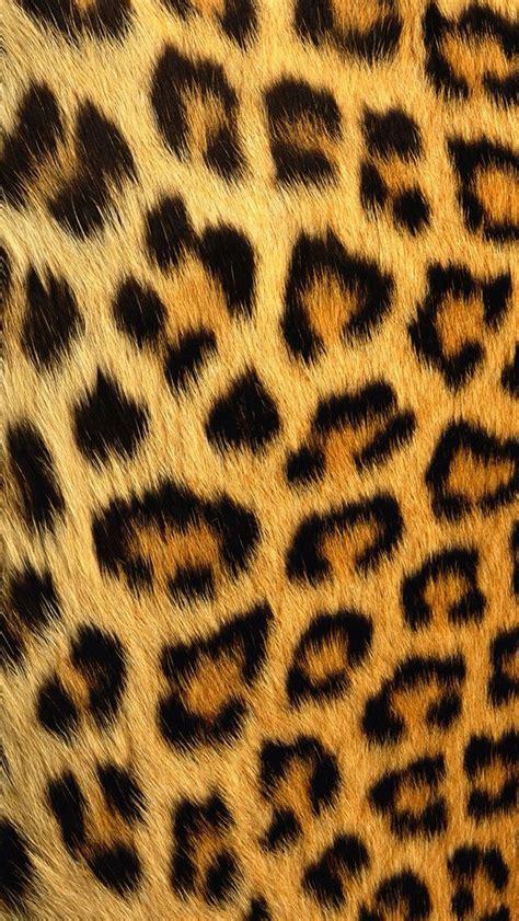 Animal Print Iphone 5 Wallpaper - leopard print iphone 5 wallpaper ty