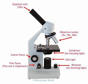 Microscope Parts Definition