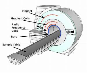 Schematic Diagram Of An Mri Machine Illustrating The