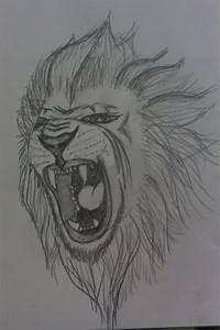 Roaring Lion Tattoo Sketch