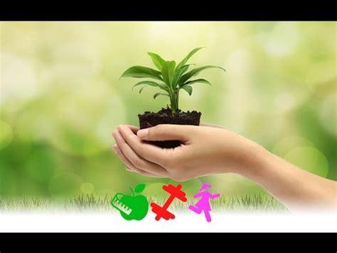 top frases c 233 lebres para el d 237 a mundial medio ambiente 5 de junio dgs brenda