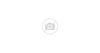 Android Apple Tablets Tablet Officially Future Ecosystem