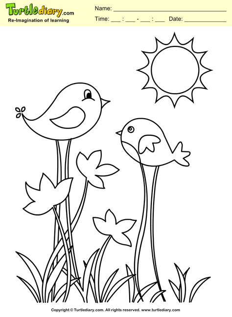 spring bird coloring sheet turtle diary