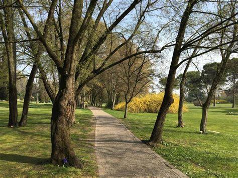 Ingresso Parco Sigurtà - parco giardino sigurt 224 e la sua meravigliosa tulipanomania