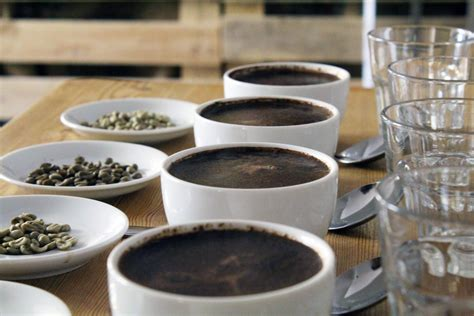 Gourmet coffee beans from sagebrush coffee: Gourmet Coffee Beans: Why Your Current Coffee Is Letting You Down