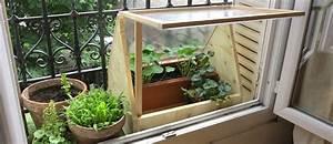Fabriquez Une Mini Serre En Polycarbonate Pour Cultiver