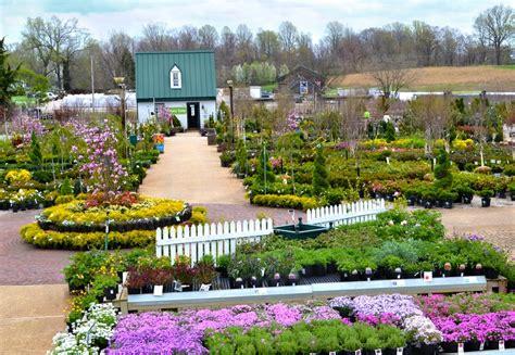Homestead Gardens  36 Photos & 29 Reviews Nurseries