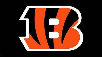Bengals Cincinnati Svg Qb Coach Cortland