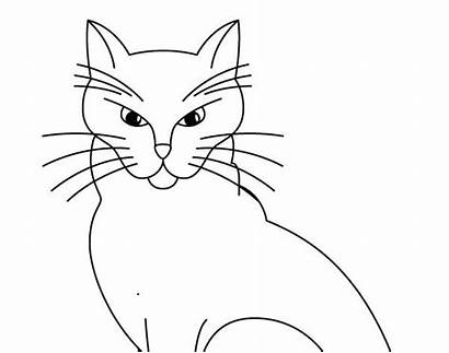 Cat Pokemon Legendary Coloring