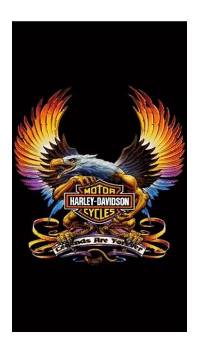 Harley Davidson Bike Birthday Biker Posters Harleydaviddsonbikepics