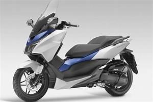 Scooter Forza 125 : scooter honda forza 125 ~ Medecine-chirurgie-esthetiques.com Avis de Voitures