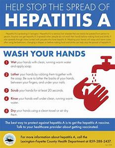 Hepatitis A: Get vaccination, wash your hands for prevention – Lexington-Fayette County Health ... Hepatitis A and Hepatitis B Vaccine