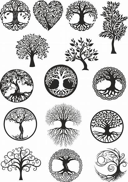 Tree Celtic Burning Wood Mandala Patterns Tattoo