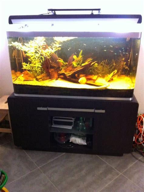 aquarium osaka 320 occasion petites annonces aquarium tout 233 quip 233