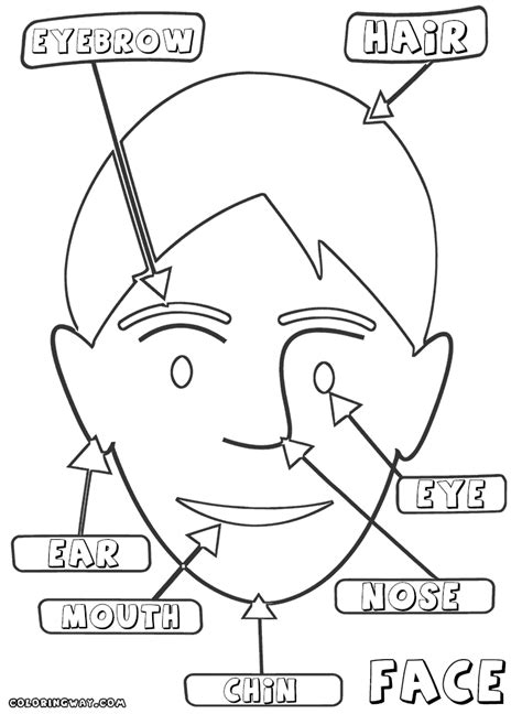coloring page face parts coloring pages