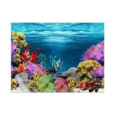 aquarium decor de fond popular aquarium background color buy cheap aquarium background color lots from china aquarium