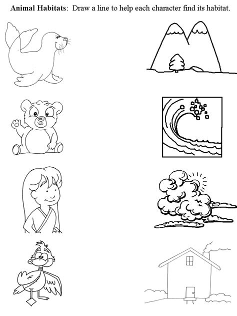 animal habitats worksheets free animals and their homes coloring pages