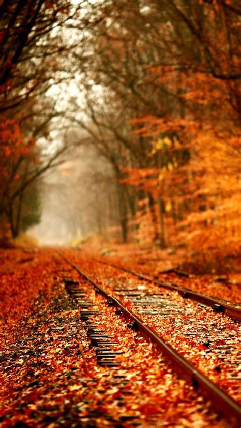 Fall Backgrounds For Iphone 11 by Fall Railroad Fall Winter Anything Rainy