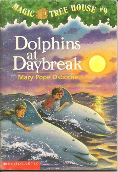 amanda caldwell orlando fls review  dolphins  daybreak