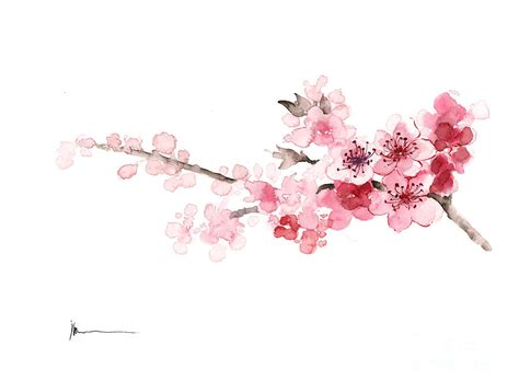 framed floral prints cherry blossom print watercolor painting painting by