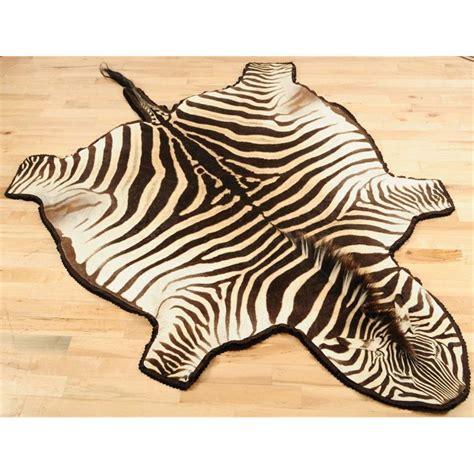 zebra skin rug zebra skin rug for rugs ideas