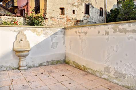 Muri Rivestiti In Legno by Risanare Un Muro Con Pietra Tecnica Bricoportale Fai Da