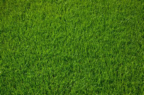 Bild 2 Aus Beitrag Bioturbo Lässt Pflanzen Sprießen