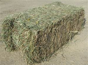 Alfalfa, Oat, Forage, Timothy, Orchard and Grass Hay