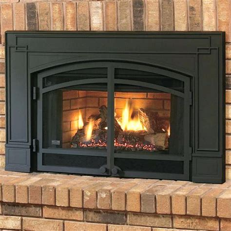 gas fireplace inserts with blower amazing living room gallery of gas fireplace insert with