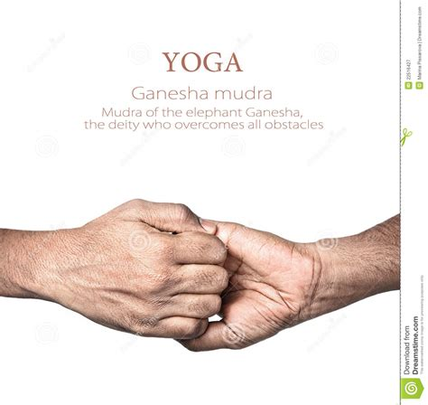 Yoga Ganesha Mudra Stock Image Image Of Gesture, Elephant. Dsm 5 Signs Of Stroke. Summertime Signs. Ptsd Signs Of Stroke. Laundry Room Signs Of Stroke. Classicaquarius Signs. Garage Sale Signs. Body Diagram Signs. Dry Mouth Signs