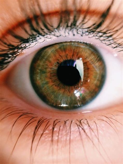 pretty eye colors 25 best ideas about eye color on