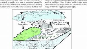 Pathways Of Pesticide Movement In The Hydrologic Cycle  2