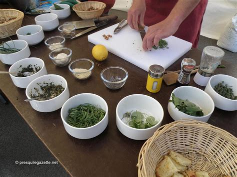 cuisine plantes sauvages sorties nature