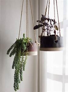 Plante Suspendue Intérieur : plante tombante cultivez votre jardin int rieur en 41 photos ~ Teatrodelosmanantiales.com Idées de Décoration