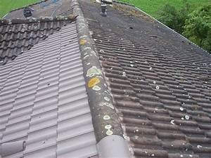 Nettoyage démoussage toiture Paris Val de Marne Seine
