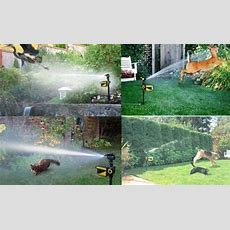 Piertech Upgraded 2015 Motion Activated Sprinkler