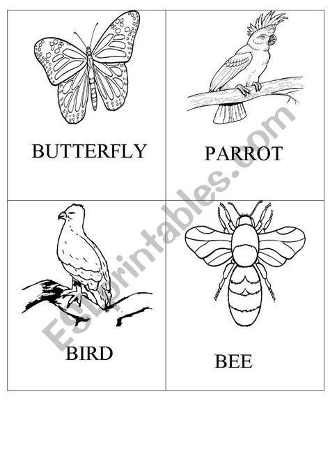 Animals that can fly - ESL worksheet by burcucan