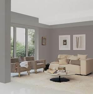 Charming couleur taupe et gris 2 12 nuances de peinture for Peinture grise pour salon