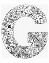 Coloring Alphabet Animal Colouring Printable Letter Adult Adults Aa sketch template