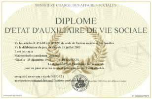 Formation Auxiliaire De Vie Sociale by Mes Detat Auxiliaire De Vie Sociale