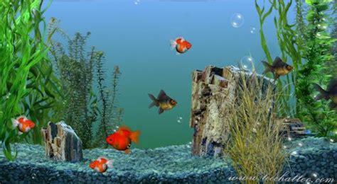 fond ecran aquarium anime gratuit screensaver et fond ecran
