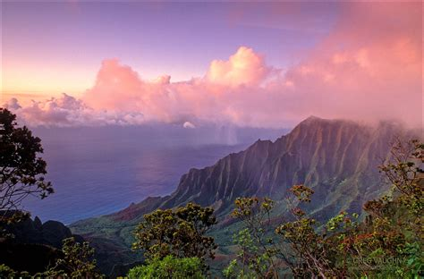 Top Nature Picture by Top 10 Locations On Kauai For Nature Photography