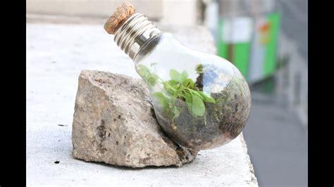 comment faire un terrarium comment faire un terrarium eternel