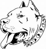 Pitbull Angry Drawing Bull Coloring Drawings Easy Pit Pages Bulls Getdrawings sketch template