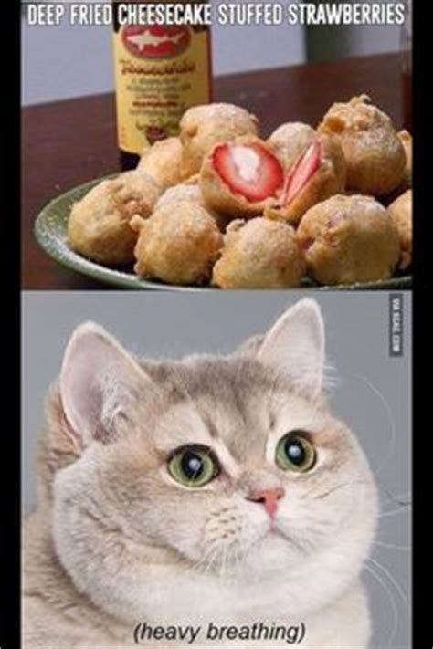 Breathing Heavily Cat Meme - 1000 images about heavy breathing on pinterest heavy breathing cat pizza and fat cats